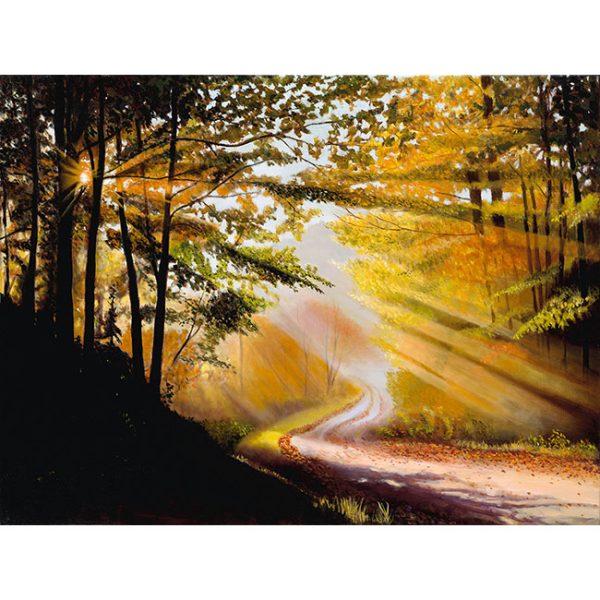 AutumnRays.JPG